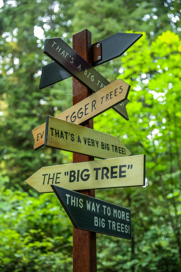 B this way to more big tree signs at redwoods national park. This way to more big tree signs at redwoods national park landmark stock photos