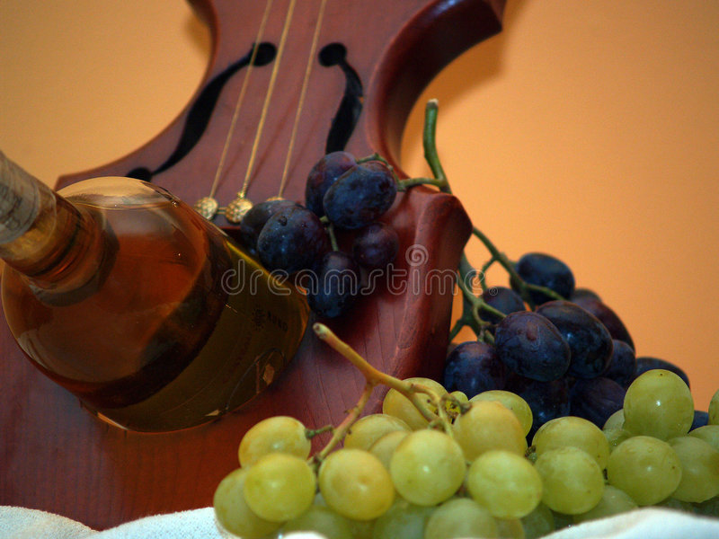 The way of the wine 5 stock photography