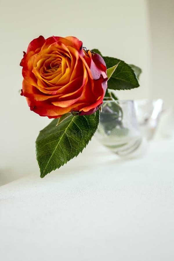 waza różaniec zdjęcia stock