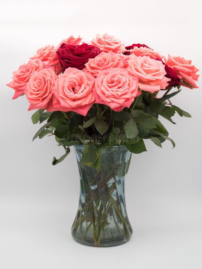 Waza róże Na Białym tle zdjęcie royalty free