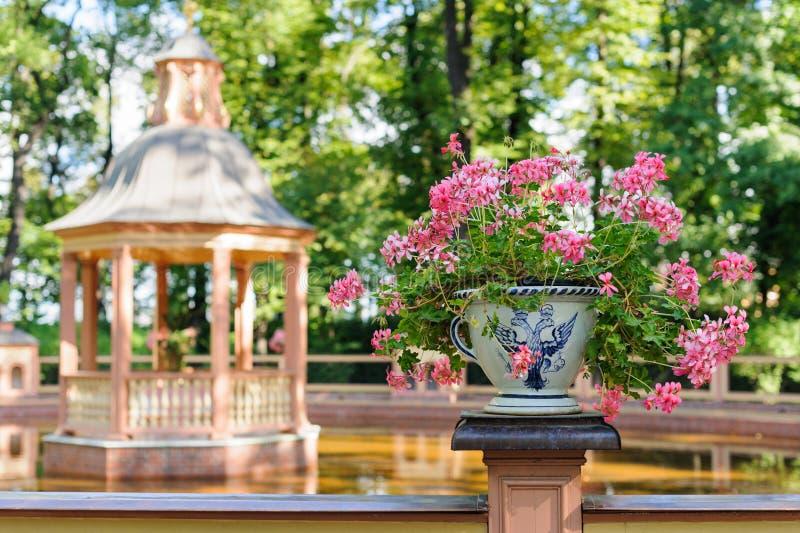 Waza z kwiatami w lato ogródzie obrazy royalty free