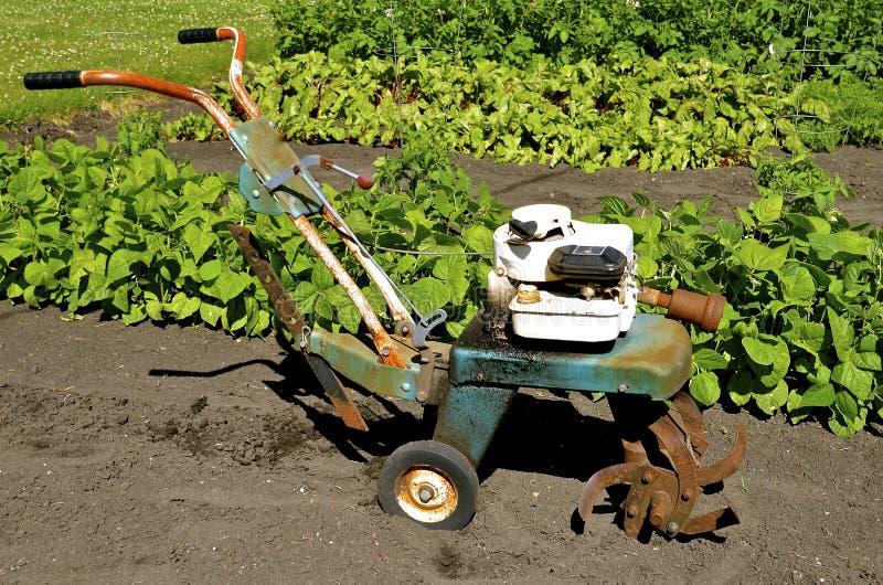 Wazeliniarski tiller w ogródzie zdjęcie stock
