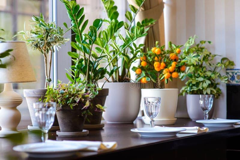 Wazy z kwiatami w restauracja słuzyć stole obraz royalty free