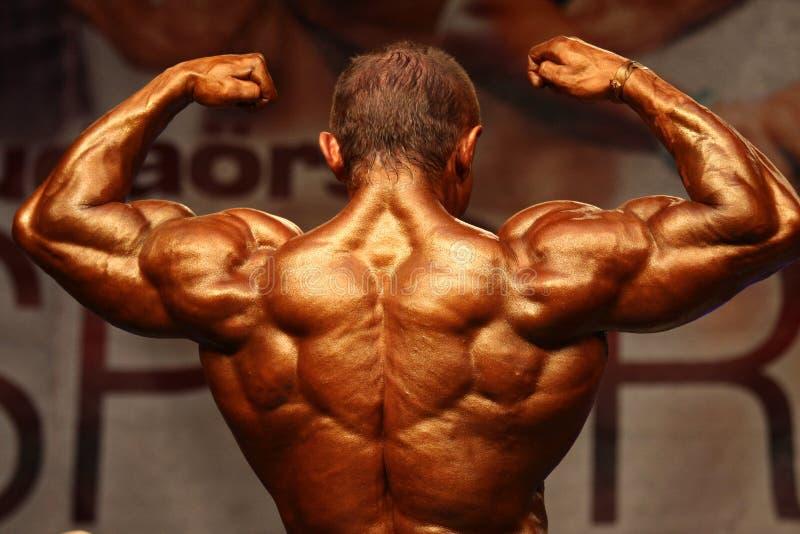 WBPF die Europees kampioenschap bodybuilding royalty-vrije stock fotografie
