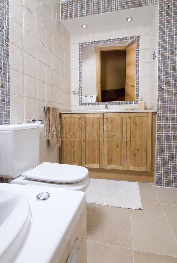 Download Wc room stock image. Image of house, wardrobe, bath, toilet - 10747849