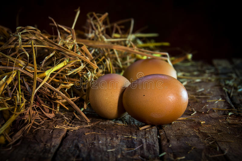 Wciąż żyć jajka na drewnie zdjęcie stock