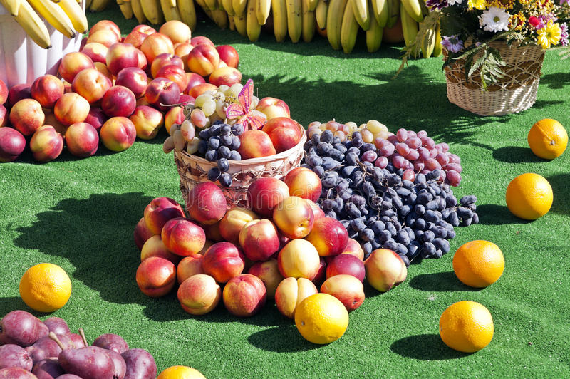 Wciąż życie brzoskwinie i winogrona obraz royalty free