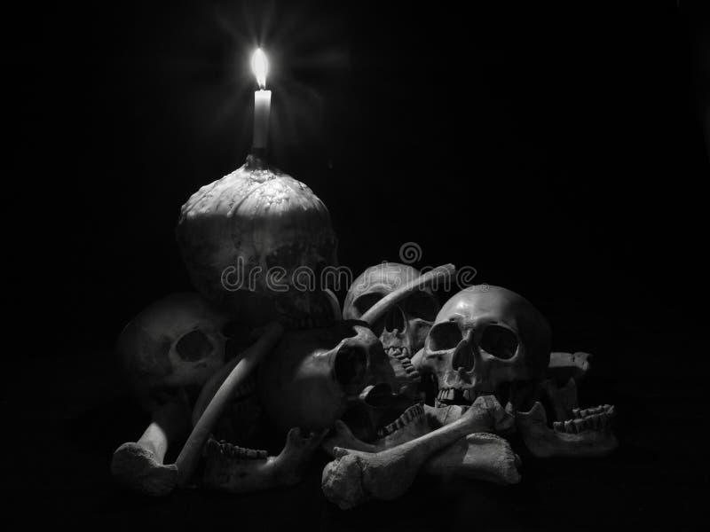 Wciąż życie czaszka fotografia royalty free