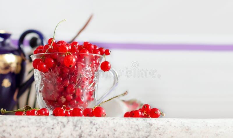 Wciąż życie czerwonego rodzynku jagody w szklanym kubku na stołu i rocznika teapot błękitnym tle Biel stół Selekcyjna ostrość kos obrazy stock