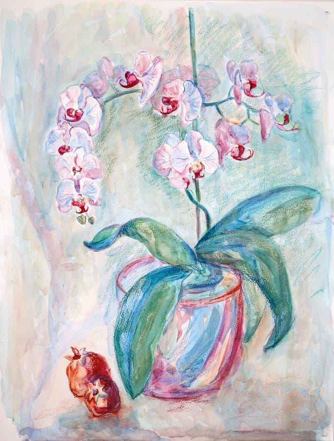 Wciąż życie granatowowie i orchidee ilustracja wektor