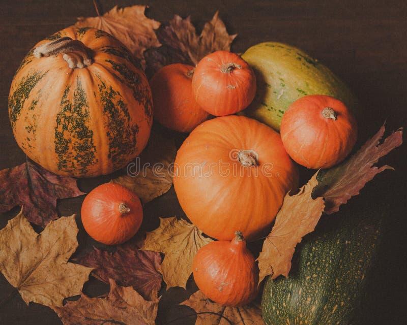 Wciąż życie, jesieni pomarańcze banie obraz royalty free