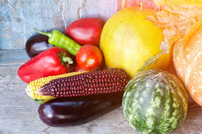 Wciąż życie jesieni warzywa: melon i arbuz, kukurudza, oberżyna, pieprze, pomidory zdjęcia royalty free