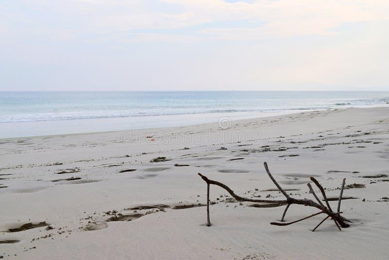 Wciąż życie na Piaskowatym Seashore - Nieskończony pokój przy Uncrowded plażą fotografia stock