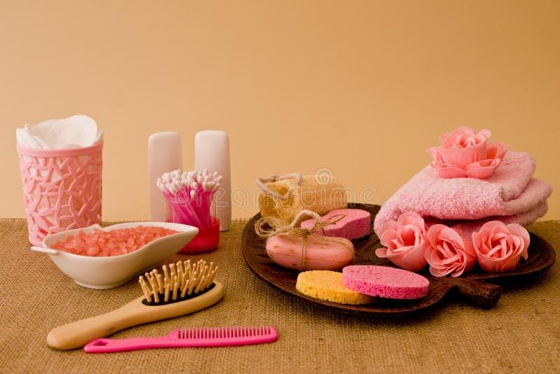 Wciąż życie narzędzia i sposoby dla skincare i włosy w menchii co zdjęcie royalty free