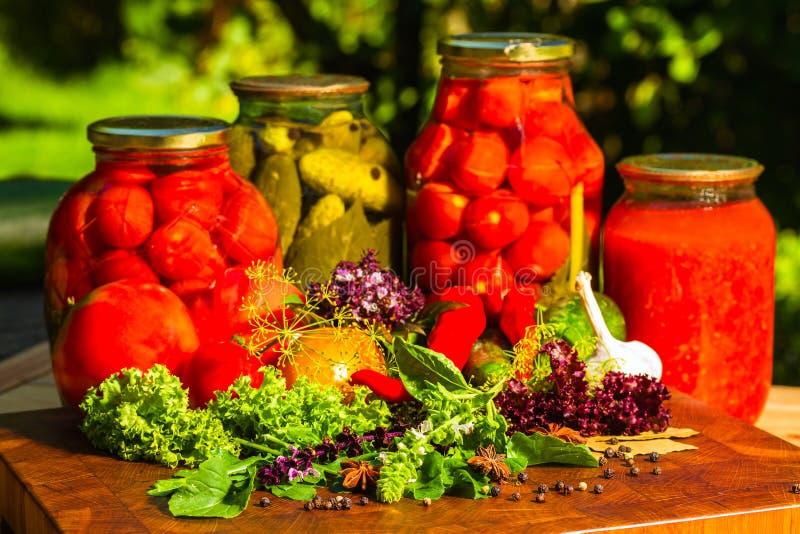 Wciąż życie od marynowanych i świeżych warzyw zdjęcia royalty free