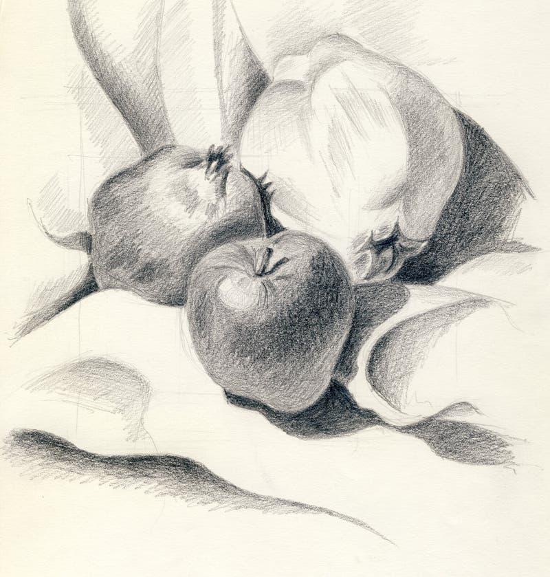 Wciąż życie owoc ilustracji