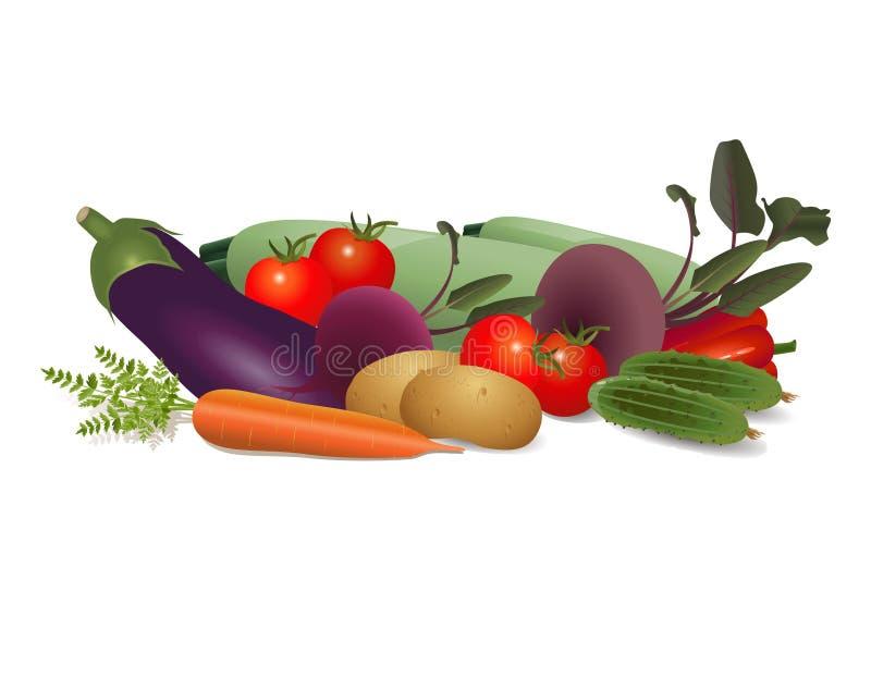 Wciąż życie różni warzywa ilustracji