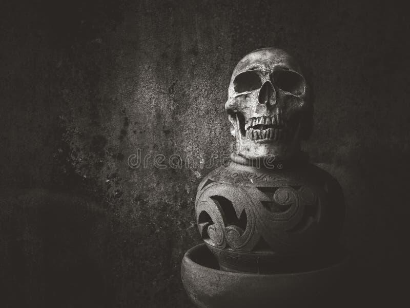 Wciąż życie sztuki czaszka zdjęcia royalty free