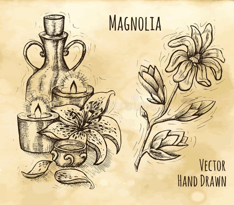 Wciąż życie z świeczkami, butelką i magnolią, ilustracji