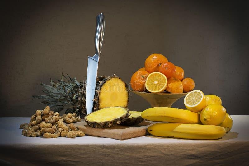 Wciąż życie Z Ananas zdjęcie stock