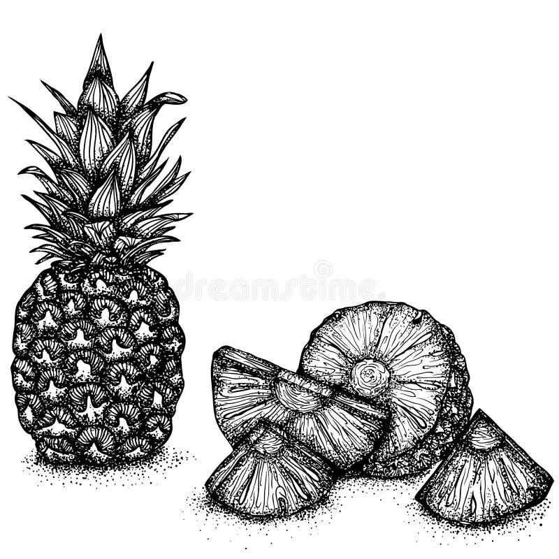 Wciąż życie z ananasami ilustracji