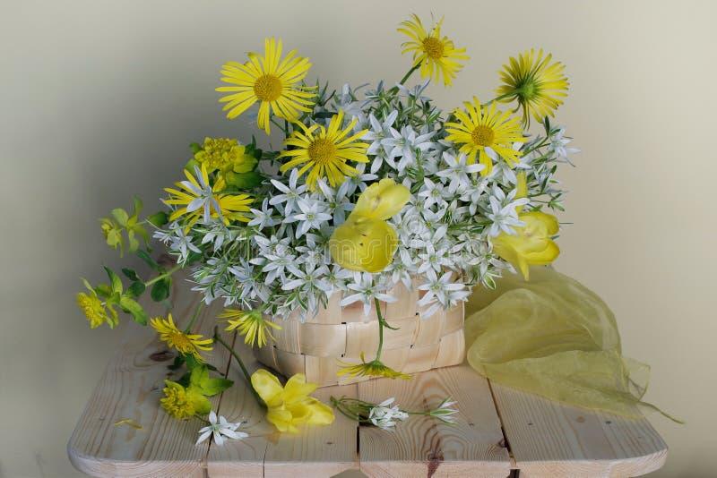 Wciąż życie z białymi śnieżyczkami, żółte stokrotki w koszu na lekkim tle zdjęcie royalty free