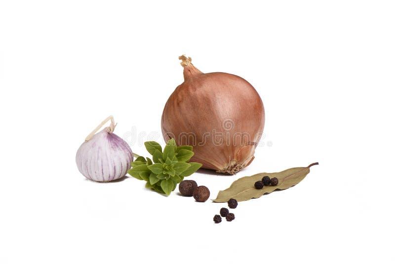 Wciąż życie z cebulą, czosnek, basil, podpalany liść z pieprzem Odizolowywający na bielu zdjęcie royalty free