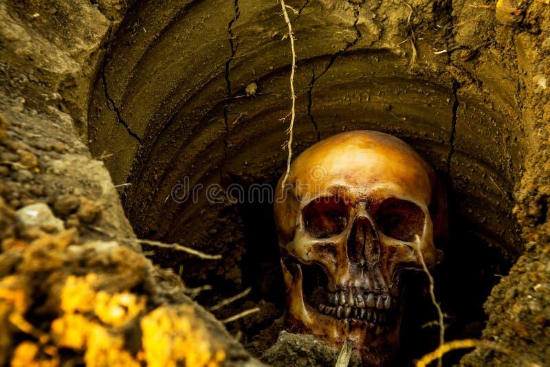 Wciąż życie z czaszką w dziurze zdjęcie stock