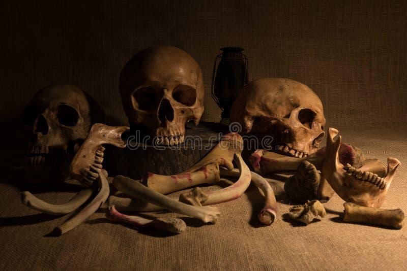 Wciąż życie z czaszkami i kościami zdjęcie royalty free