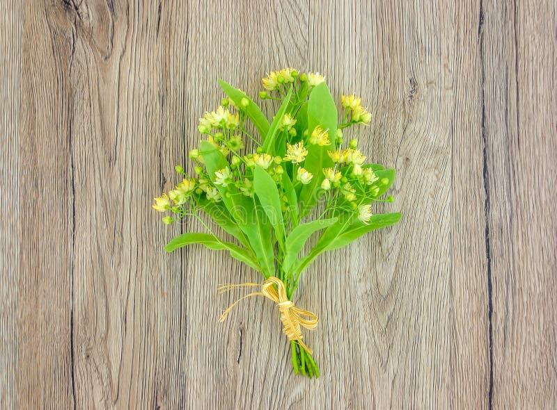Wciąż życie z lipowym kwiatu bukietem Mieszkanie nieatutowy, odgórny widok obraz stock