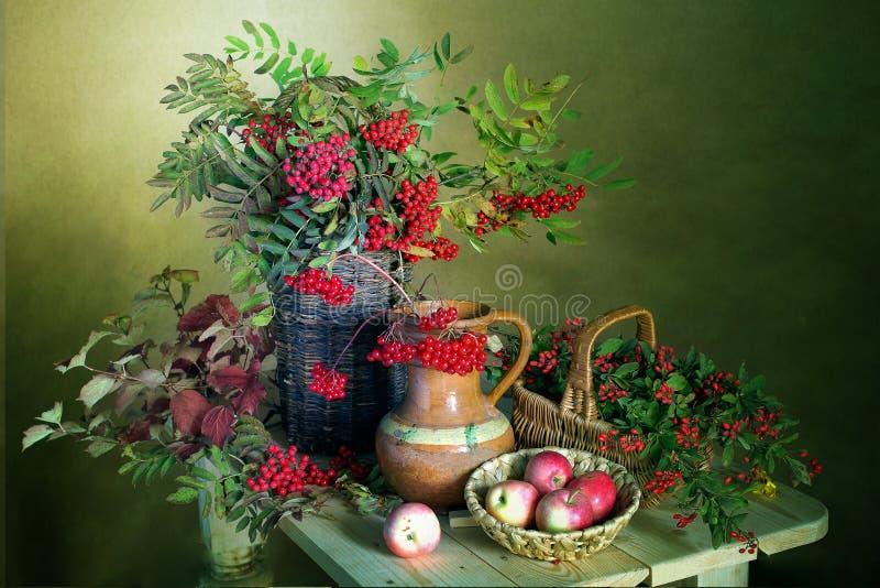 Wciąż życie z Rowan jagodami, viburnum, berberysem pospolitym i jabłkami, Piękny bukiet z czerwonymi jagodami i jabłkami zdjęcie stock