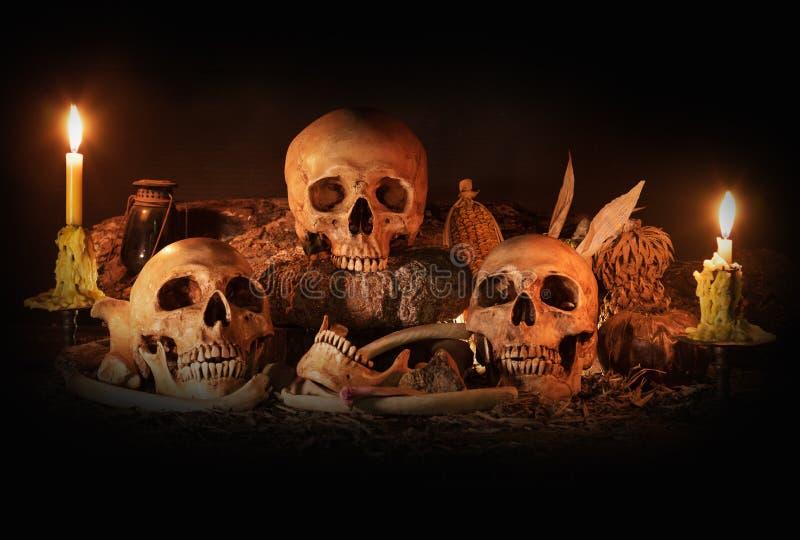 Wciąż życie z trzy czaszkami, suchą owoc i sianem, fotografia stock