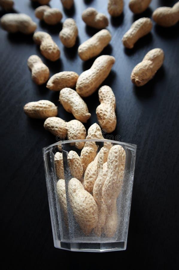 Wciąż życie z wysuszonymi arachidami obraz stock