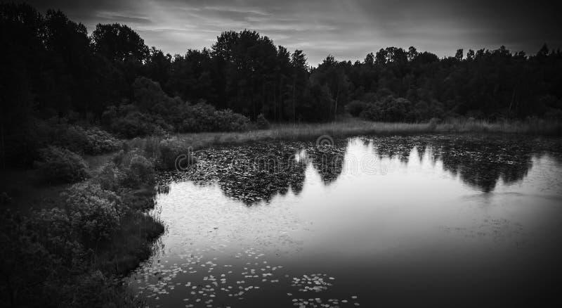 Wciąż jeziorny czarny i biały krajobraz przy nocą zdjęcia royalty free
