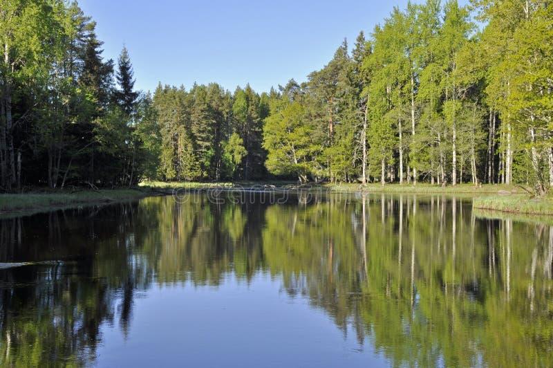 wciąż jeziorny odbicie obrazy stock