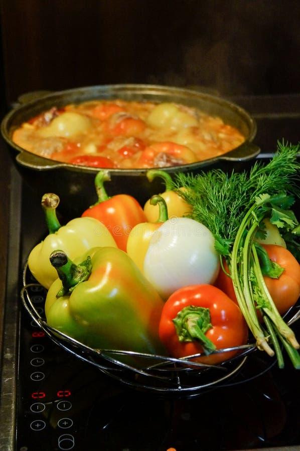 wciąż kuchenny życie Świezi surowi warzywa i wrzący kocioł z apetycznym kolacja posiłkiem na elektrycznej kuchence karmowy świeży zdjęcie stock