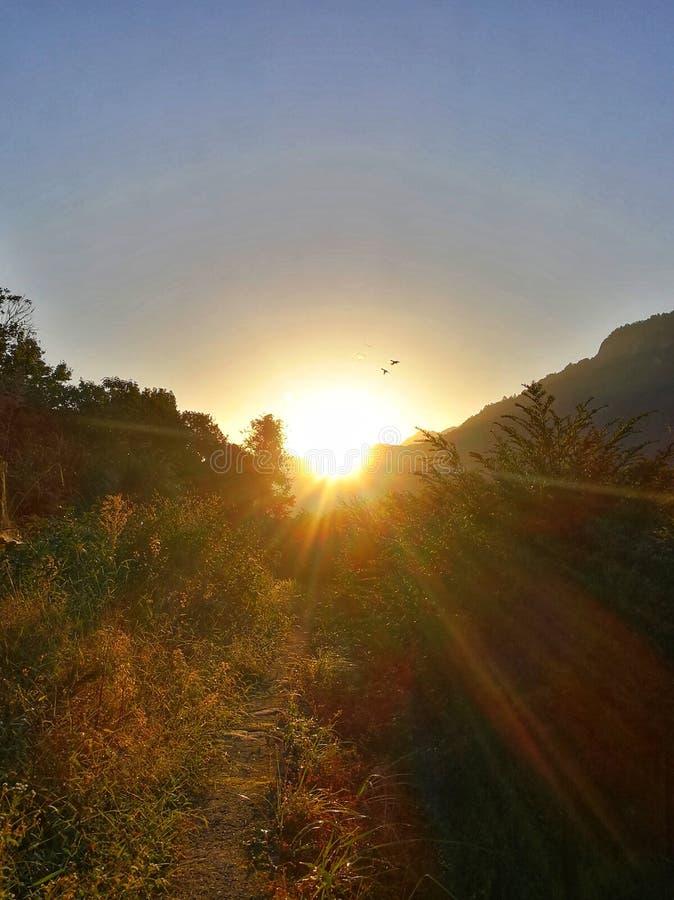 Wcześnie rano, wschód słońca Halni ślada, obraz royalty free