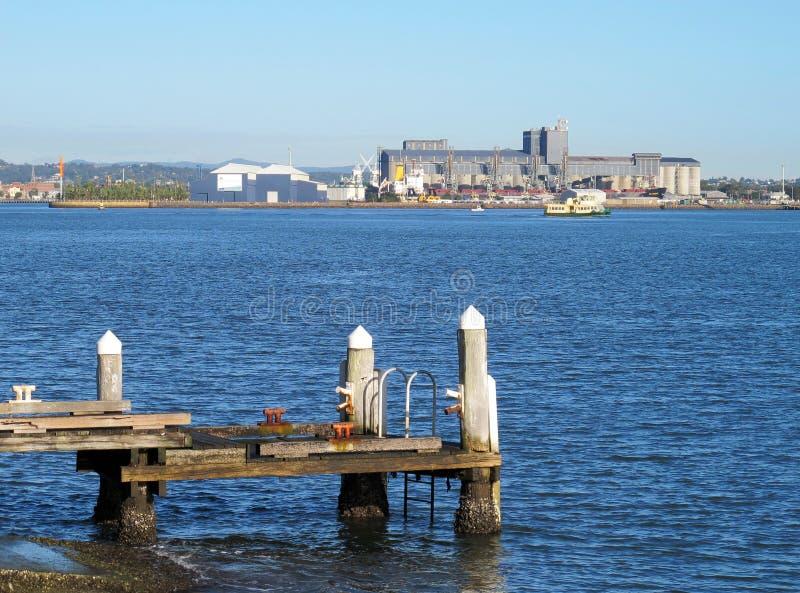 wczesna myśliwego ranek Newcastle rzeka obraz stock