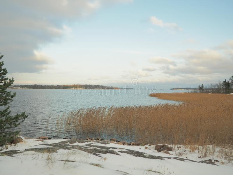 Wczesna zima na jeziornym ` s brzeg zdjęcie stock