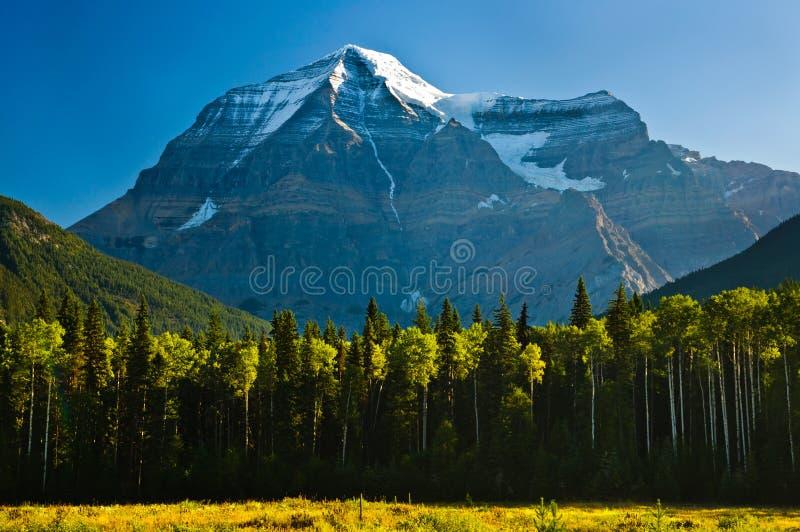 wczesnego poranku góry robson widok fotografia royalty free