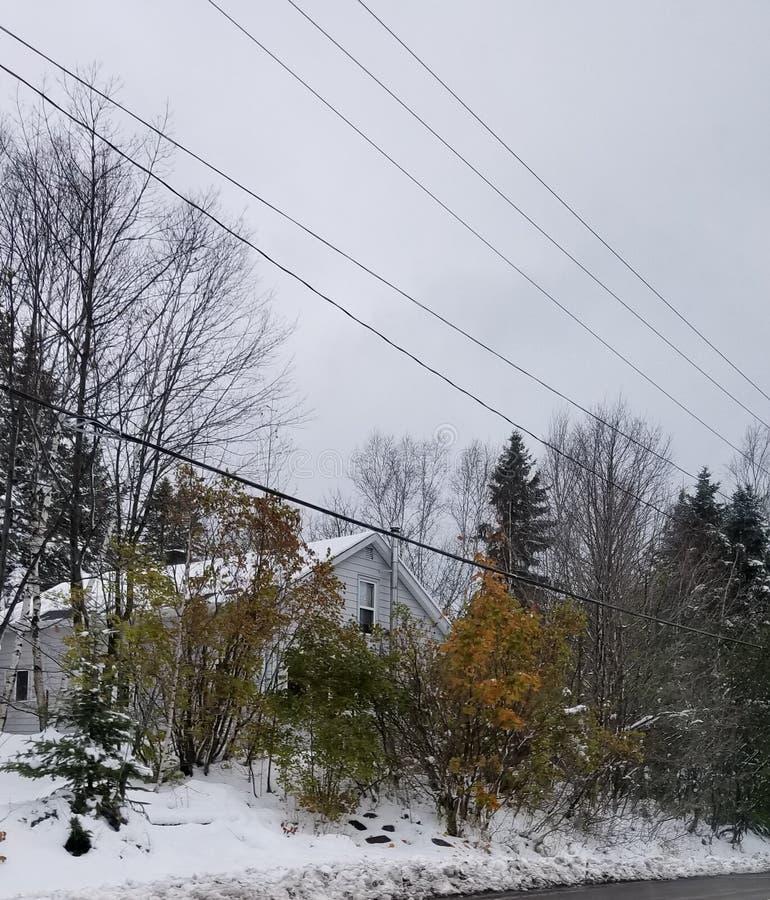 Wczesny jesień śnieg zdjęcia royalty free