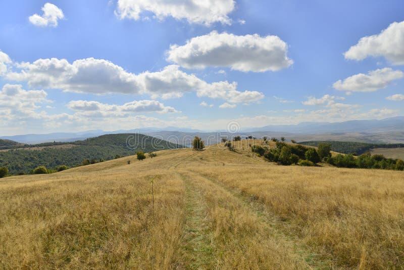 Wczesny jesień krajobraz z drzewami, wzgórzami i wiejską drogą, zdjęcia royalty free