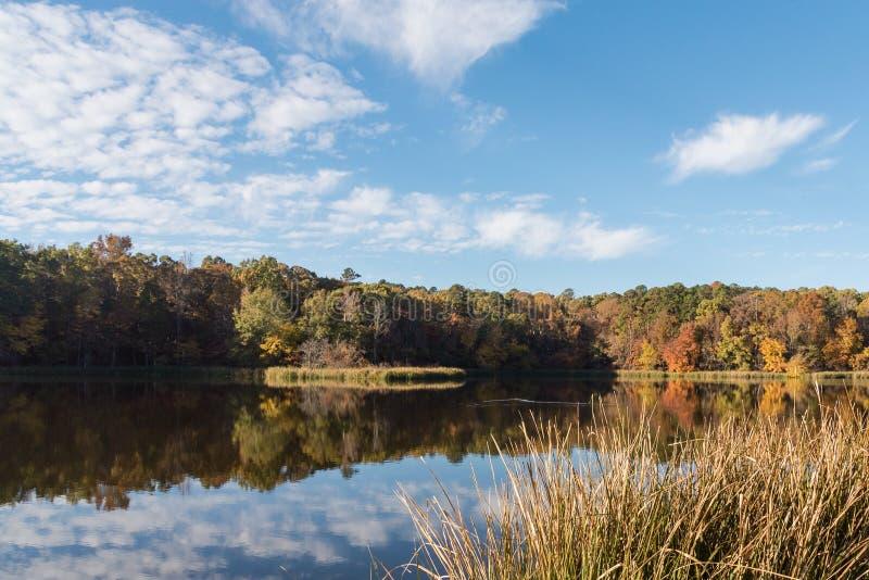 Wczesny jesień ranku odbicie w jeziorze obrazy royalty free