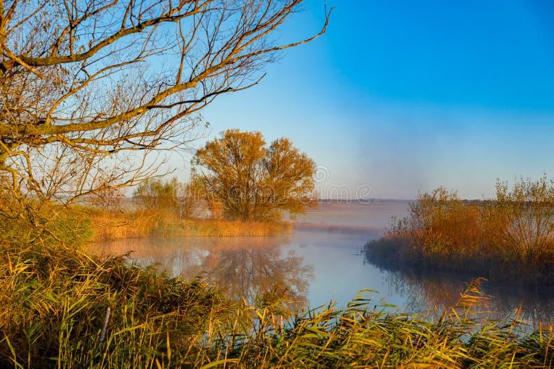 Wczesny poranek rzeki wschód słońca zdjęcia royalty free