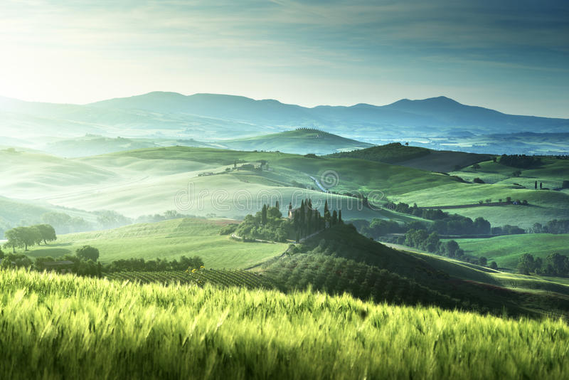 Wczesny wiosna ranek w Tuscany, Włochy obraz stock