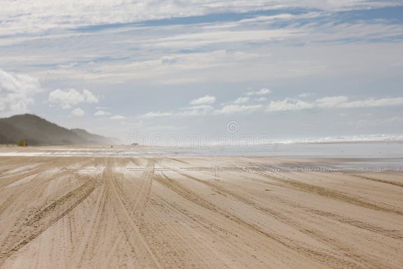 4WD在海滩的轨道 免版税库存照片