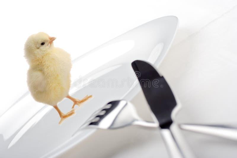 Weâve geworden kip voor diner royalty-vrije stock foto