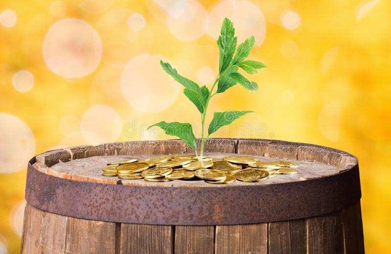 Wealth royalty free stock images