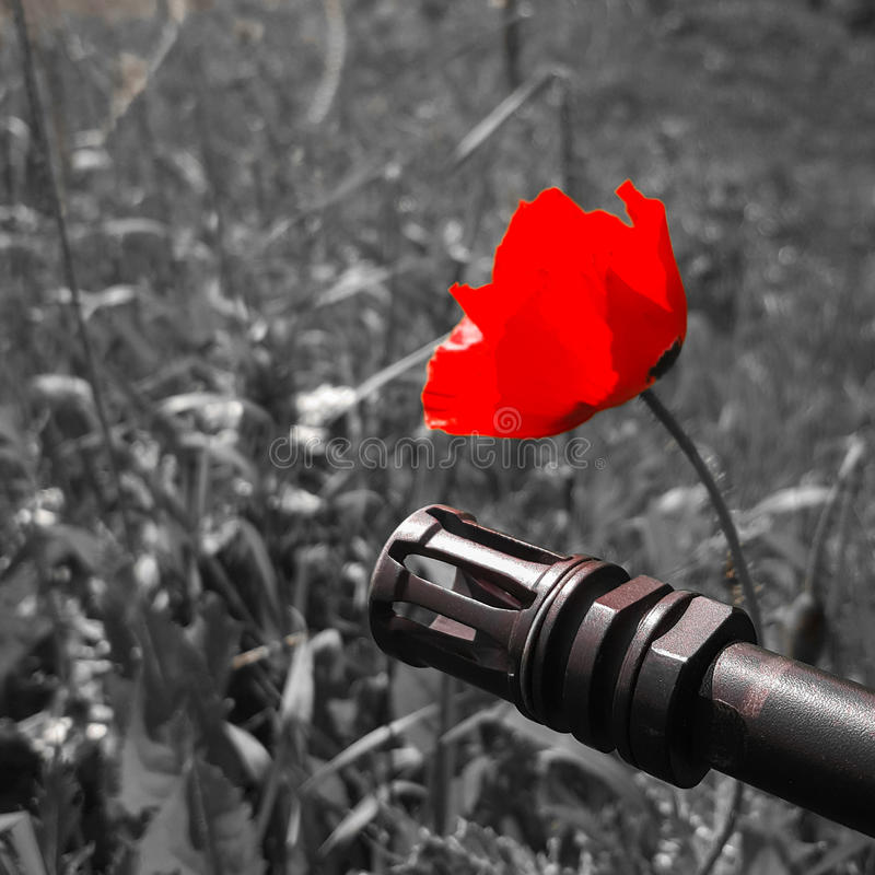 Weapon against colorful flowers, choosing between peace or war. Concept: stop conflict, feel the world beauty. Metal weapon against colorful flowers, choosing stock images