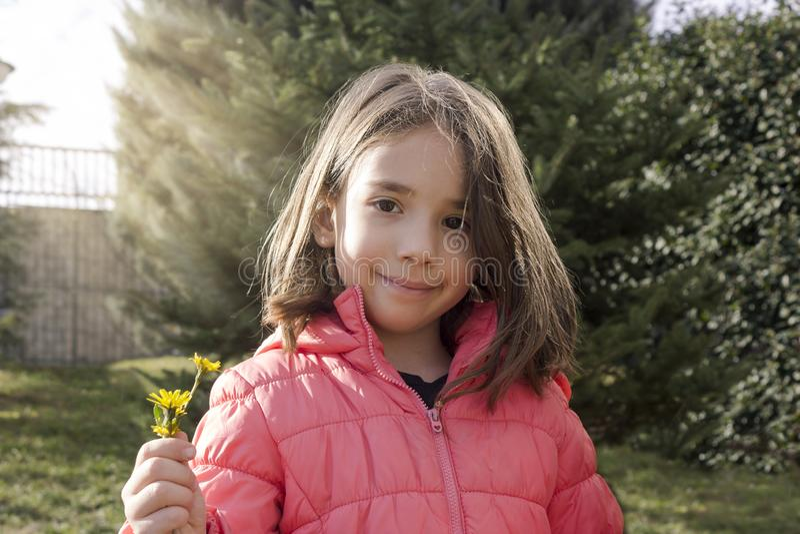 The little girl handing yellow flower stock photo